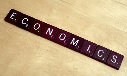 Economics for Dummies?