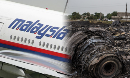 THE MH17 SHOOT-DOWN