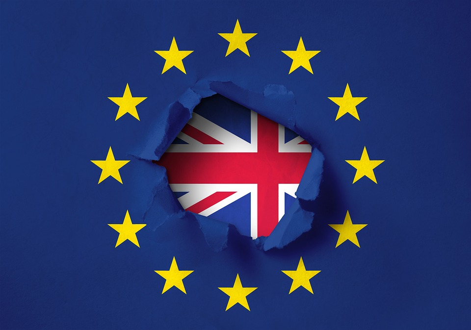 YOUR DAILY BREXIT – Friday 22nd February 2019