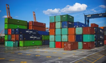 Government sets out its customs stall