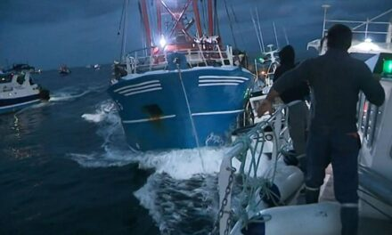 "Scallop Fishing Attacks Nothing More Than ""Piracy"""