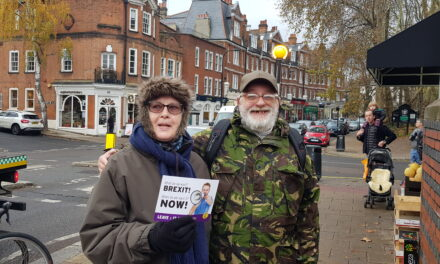 UKIP North London – Brexit stall report