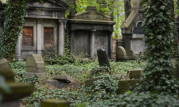 Socialism and the Grave