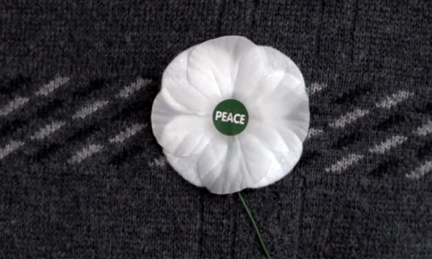 Let's turn back the clock on white poppies