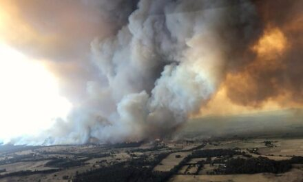 A LETTER TO THE EDITOR – ON THE AUSTRALIAN BUSHFIRES. SATURDAY 11TH JANUARY 2020