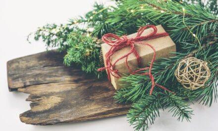 YOUR DAILY BETRAYAL – Thursday 24th December 2020 – Christmas Eve