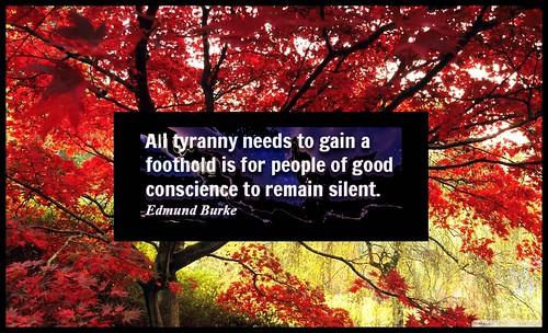 Through Covid Terror to Tyranny