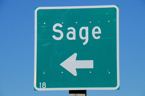 YOUR DAILY BETRAYAL – Thursday 13th May 2021 – SAGE is back